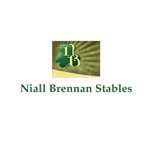 Niall Brennan Farm Horse Farms Forever Ocala Marion County