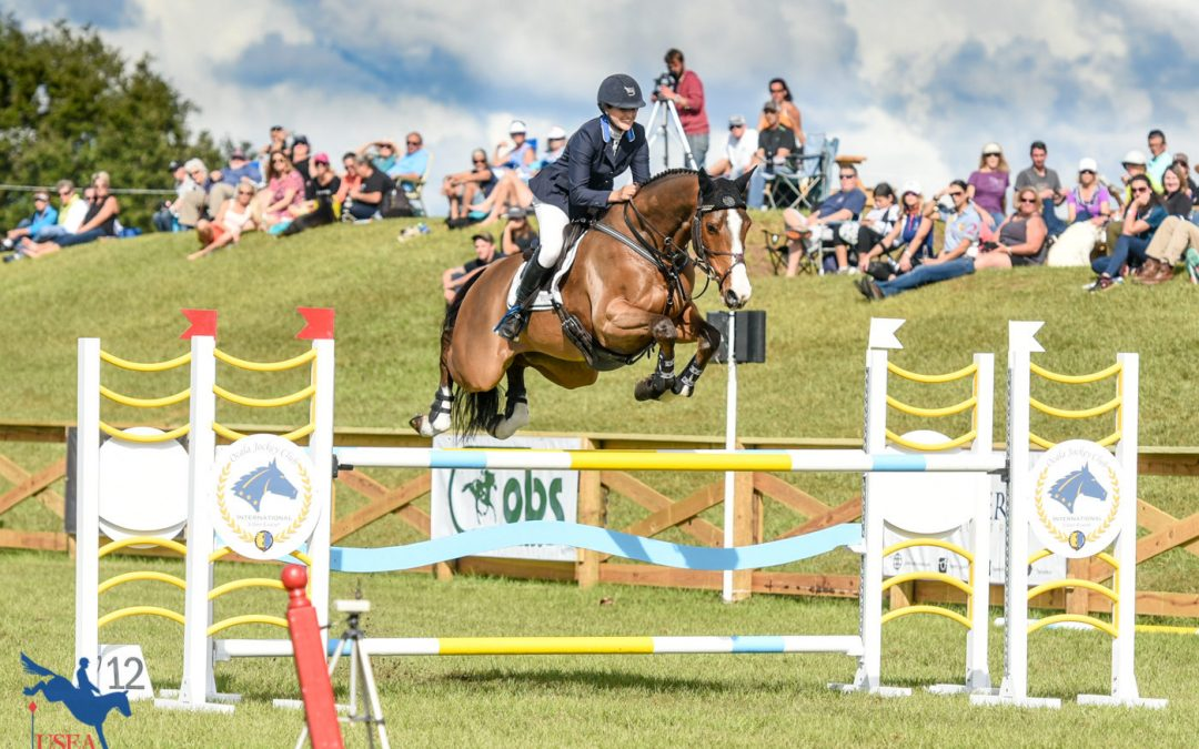 November 2019 Equestrian Events
