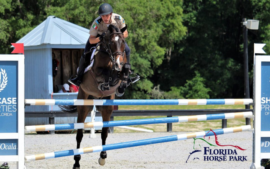 October 2019 Equestrian Events