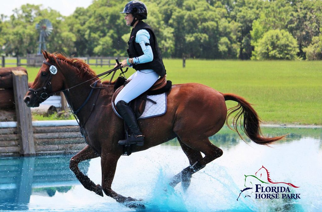 December 2019 Equestrian Events