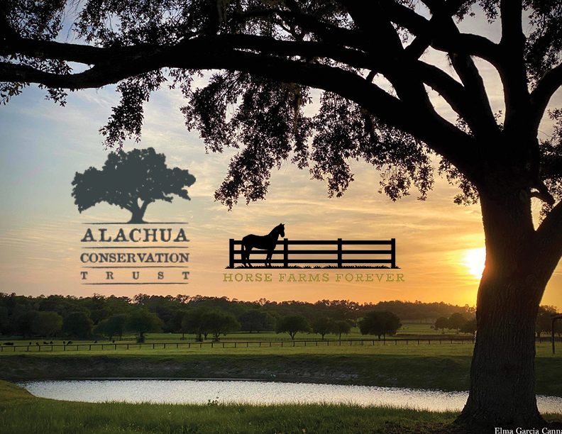Horse Farms Forever and the Alachua Conservation Trust Announce Partnership to Protect Land in the Farmland Preservation Area