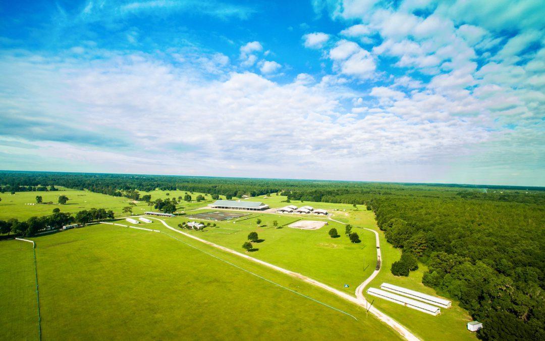 Ocala's Home Grown Horse Park